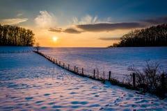 Övervintra solnedgången över ett staket och snöa det dolda lantgårdfältet i lantligt royaltyfri bild