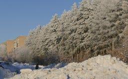 Övervintra staden med enorma buntar av snö efter tunga snöfall royaltyfri bild