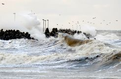 Övervintra stormen på Östersjön, Kolobrzeg, Polen arkivfoton