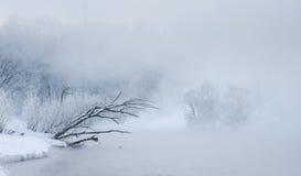 Övervintra trees nära en flod som täckas med hoar på morgonen Arkivbilder