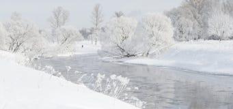 Övervintra trees nära en flod som täckas med hoar på morgonen som tändas med Arkivfoto