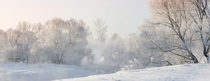 Övervintra trees nära en flod som täckas med hoar på morgonen som tändas med Arkivbilder