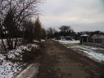 Övervintra vägen och snöa med landskap av träd med frost royaltyfri bild