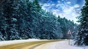 Övervintra vägen och snöa träd, vänd till det högra tecknet arkivfoto