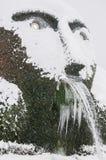 Övervintrar vattenfallet Arkivbilder