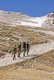 Övningsmarsch i de höga bergen Fotografering för Bildbyråer