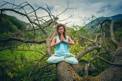 Övningsyoga för ung kvinna som är utomhus- på enormt grymt träd på monteringen royaltyfri fotografi
