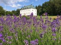 Övralid. Famous writer von Heidenstam's manor Övralid Royalty Free Stock Photos