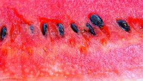 Övre bild för rött vattenmelonslut Royaltyfri Fotografi