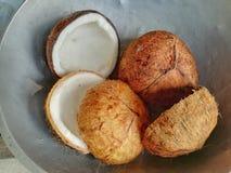Övre bild för slut av kokosnötter Royaltyfri Bild