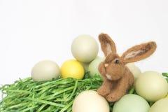 Övre brun Felted för slut kanin med påskägg och gräs på vit Royaltyfri Foto