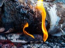 Övre, flamma, aska och glöd för lägereld nära arkivfoto
