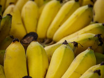 Övre gula bananer för slut Arkivbilder