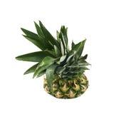 Övre - halva av en ananasfrukt Arkivfoton