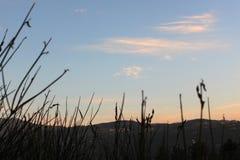 Övre landskap för slut i Libanon Mtein Arkivbild