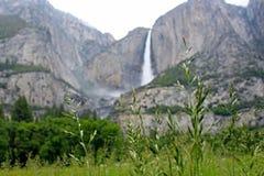 Övre- och lägre Yosemite Falls, Yosemite nationalpark Arkivbild