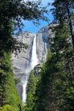 Övre- och lägre Yosemite Falls, Yosemite, Yosemite nationalpark Royaltyfria Foton