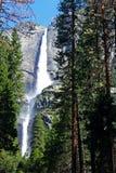 Övre- och lägre Yosemite Falls, Yosemite, Yosemite nationalpark Royaltyfri Foto