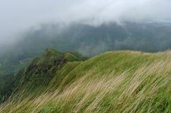 Övre sikt av gröna kullar Arkivbilder