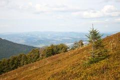övre sikt för carpathian berg Arkivfoton