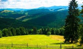 övre sikt för carpathian berg Royaltyfri Foto