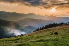 övre sikt för carpathian berg Bergbyn på gräsplanen sluttar Dzembronya Royaltyfri Foto