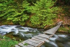 övre sikt för carpathian berg Bergfloden nära vattenfallet Shipot Arkivbilder