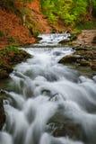 övre sikt för carpathian berg Bergfloden nära vattenfallet Shipot Royaltyfri Foto