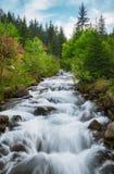 övre sikt för carpathian berg Bergfloden nära vattenfallet Shipot Arkivbild