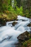 övre sikt för carpathian berg Bergfloden nära vattenfallet Shipot Royaltyfria Bilder
