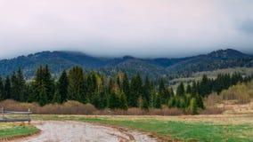 övre sikt för carpathian berg Landskap med granar Royaltyfria Foton