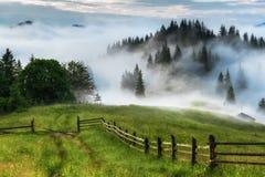 övre sikt för carpathian berg Vägen som leder till kanten av skogen Fotografering för Bildbyråer