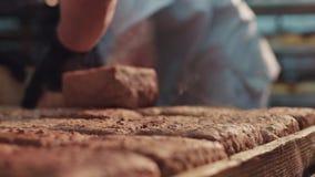 Övre sikt för extremt slut av kokheta konfektions- loaves av bröd som sorteras av bagaren Brödtillverkning, bransch stock video