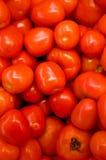övre sikt för nya tomater Royaltyfria Bilder
