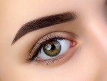 Övre sikt för slut av det härliga bruna kvinnliga ögat royaltyfri fotografi