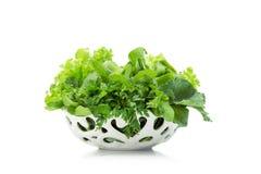 Övre sikt för slut av gröna grönsaker i den vita bunken royaltyfri bild
