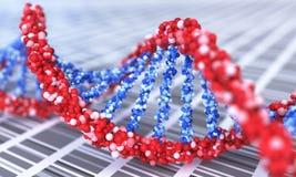 Övre sikt för slut på spirala DNAmolekylar framförd illustration 3d vektor illustrationer