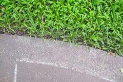Övre stengångbana och gräs för slut Royaltyfri Foto