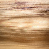 Övre textur för slut av den torkade palmbladet Arkivbilder