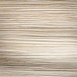 Övre textur för slut av den torkade palmbladet Royaltyfri Foto