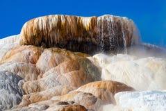 Övredelen av palettvårterrasserna av Mammoth Hot Springs Arkivbilder