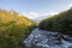 Övredelen av Ryuzu faller, Nikko, den Tochigi prefekturen, Japan Med tidiga nedgångfärger royaltyfri foto