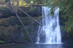 Övrenorr nedgångar silver faller delstatsparken, Oregon royaltyfri fotografi