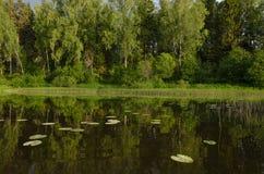 Övreräckvidder av Moskvafloden Arkivfoton