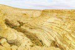Övresikt av kanjonen av den Ein Avdat nationalparken royaltyfri bild