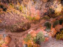 Última caída sobre un bosque de New Hampshire fotografía de archivo libre de regalías