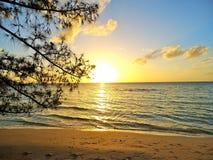 Última chamada para o sol Vidas douradas da areia sobre Imagem de Stock Royalty Free