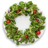 Últimaensalada de Ð con los tomates en el fondo blanco Fotografía de archivo libre de regalías
