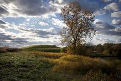 Última hora de la tarde Autumn Day Imagen de archivo