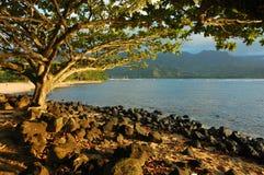 Última hora de la tarde en la bahía de Hanalei Fotografía de archivo